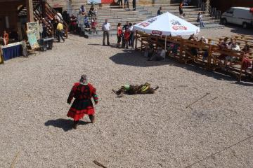 Galeria Międzynarodowy Festyn Rycerski 2009