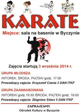 Karate 2014.jpeg