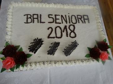 Galeria Bal Seniora 2018